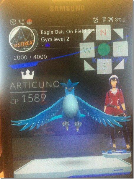 Articuno - Pokémon GO