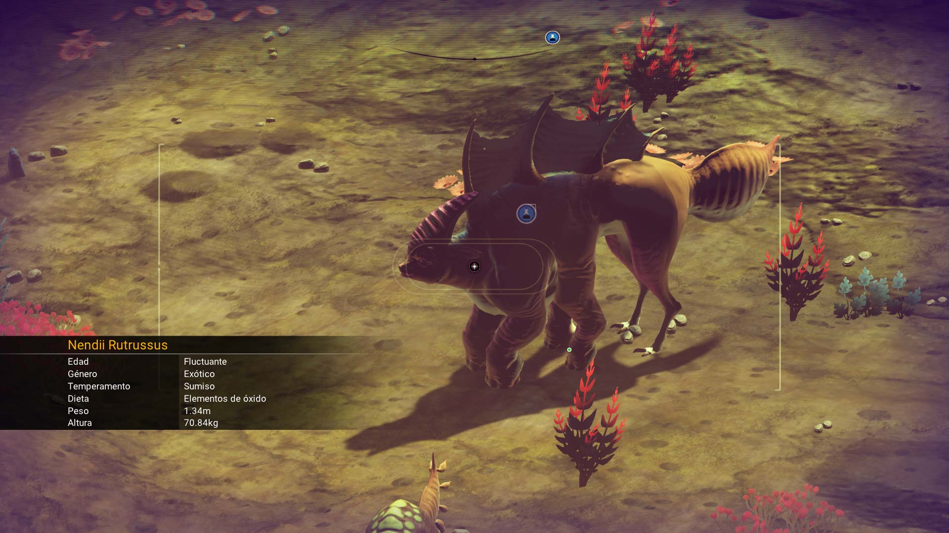 No Man's Sky analisis bicho