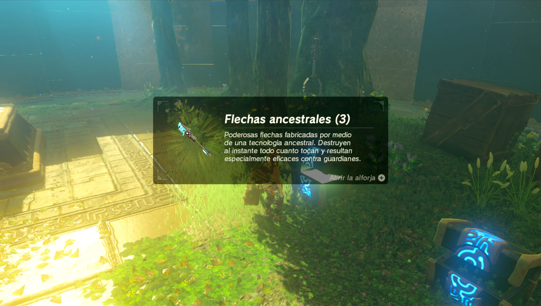 Zelda Breath of the Wild flechas