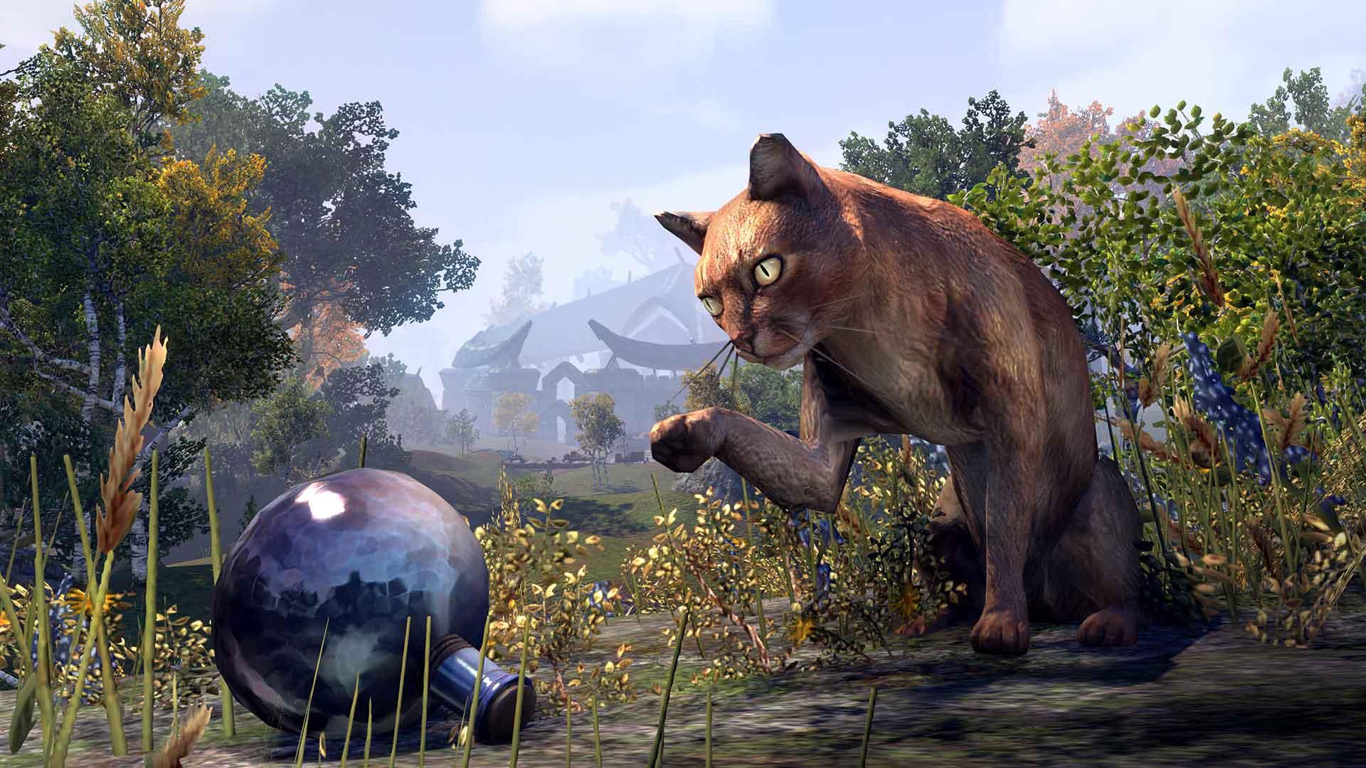 The elder scrolls online mascotas