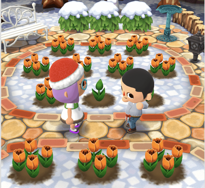 Animal Crossing Pocket Camp - Visitar jardín amigo