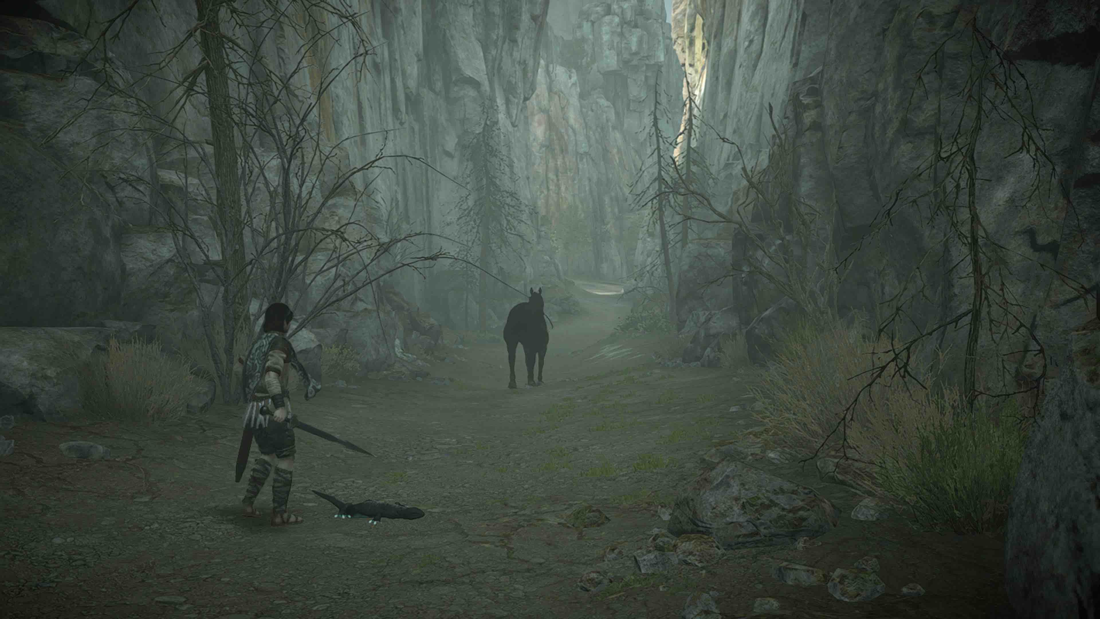 Shadow_of_the_Colossus_Avance_11