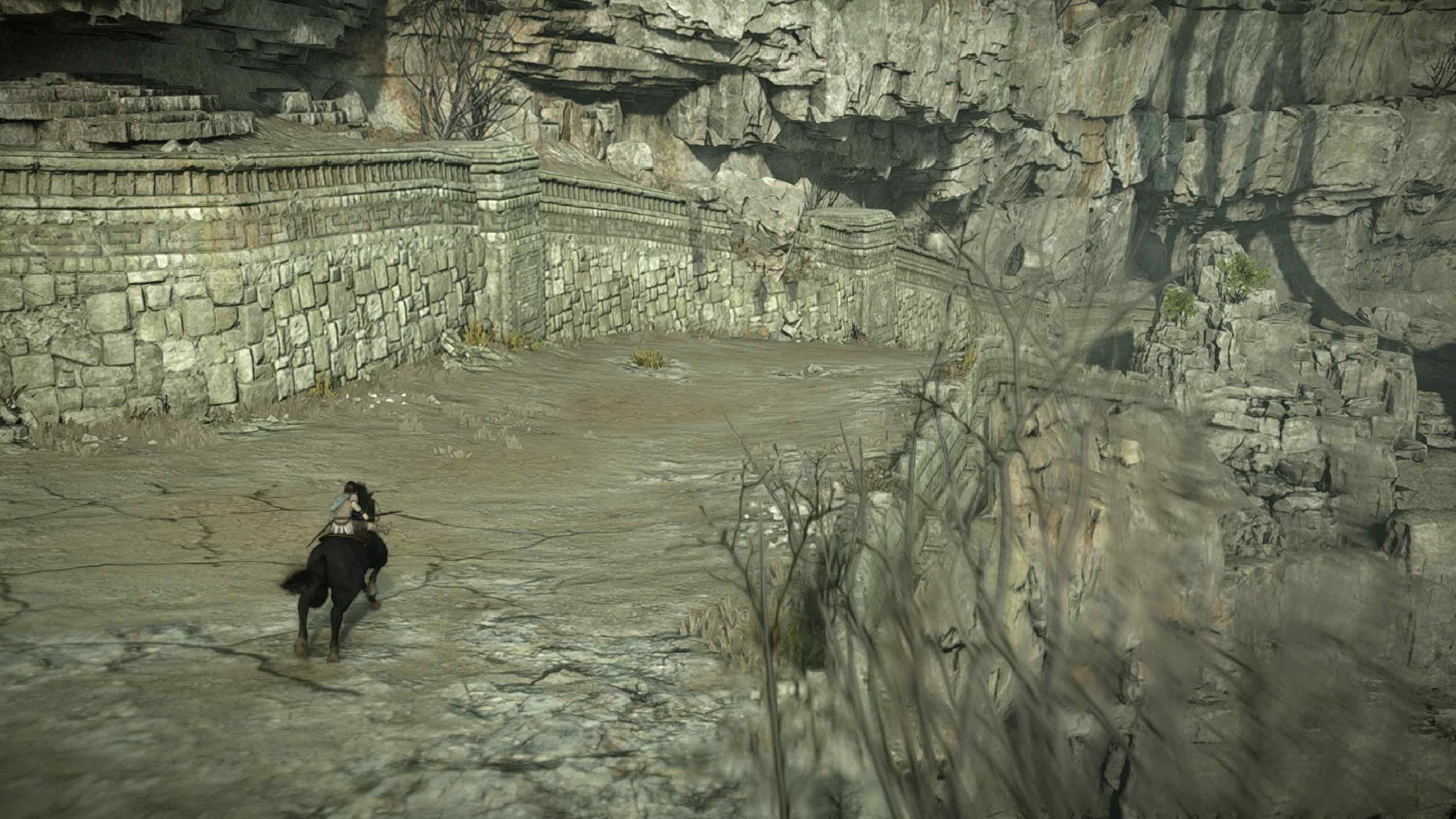 Shadow_of_the_Colossus_Coloso_2_1