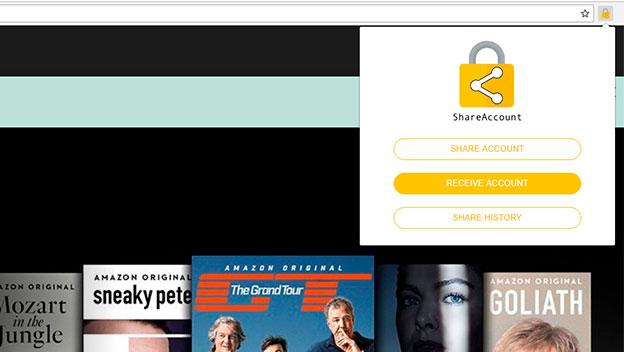 ShareAccount Netflix
