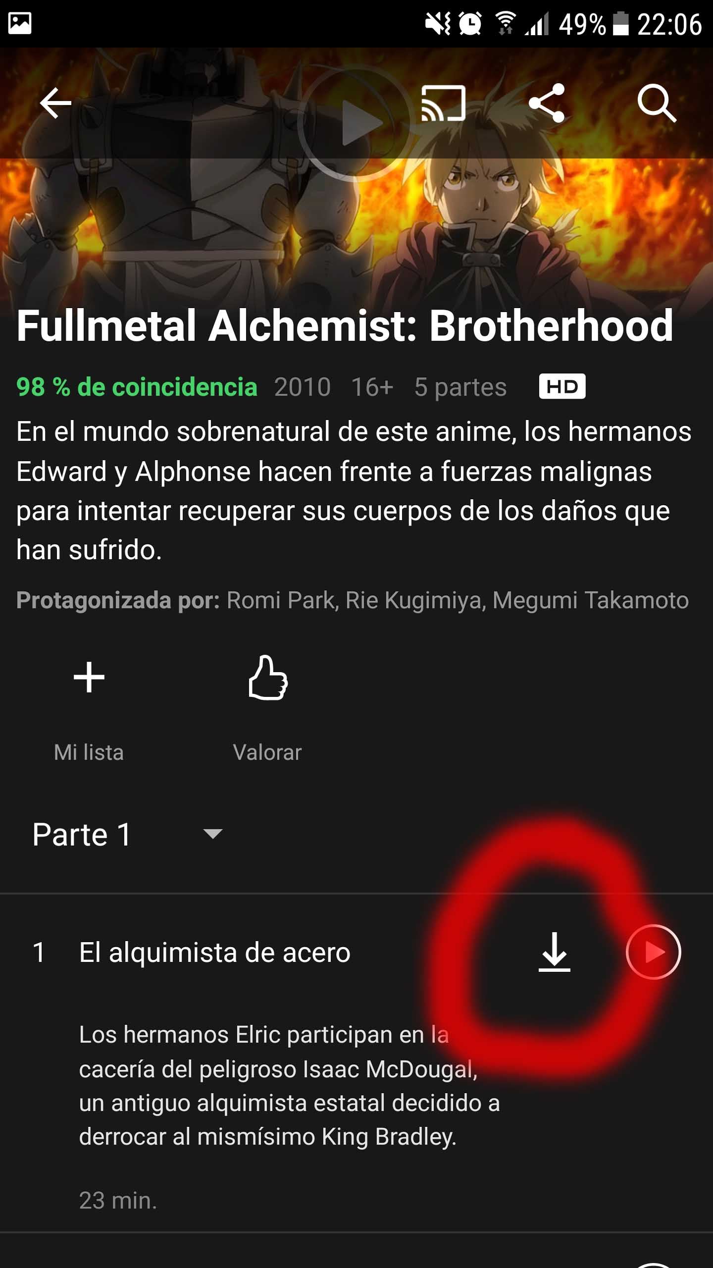 Netflix - Descargar contenido
