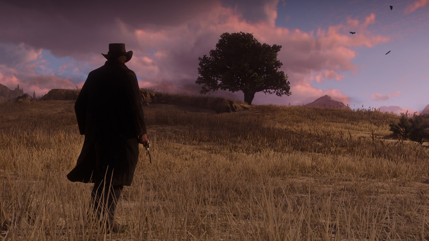 Exclusiva Red Dead Redemption 2 9