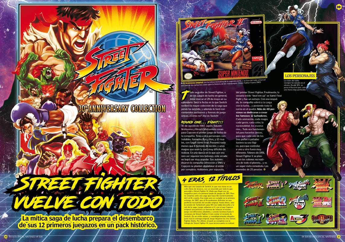 Street Fighter RON 309