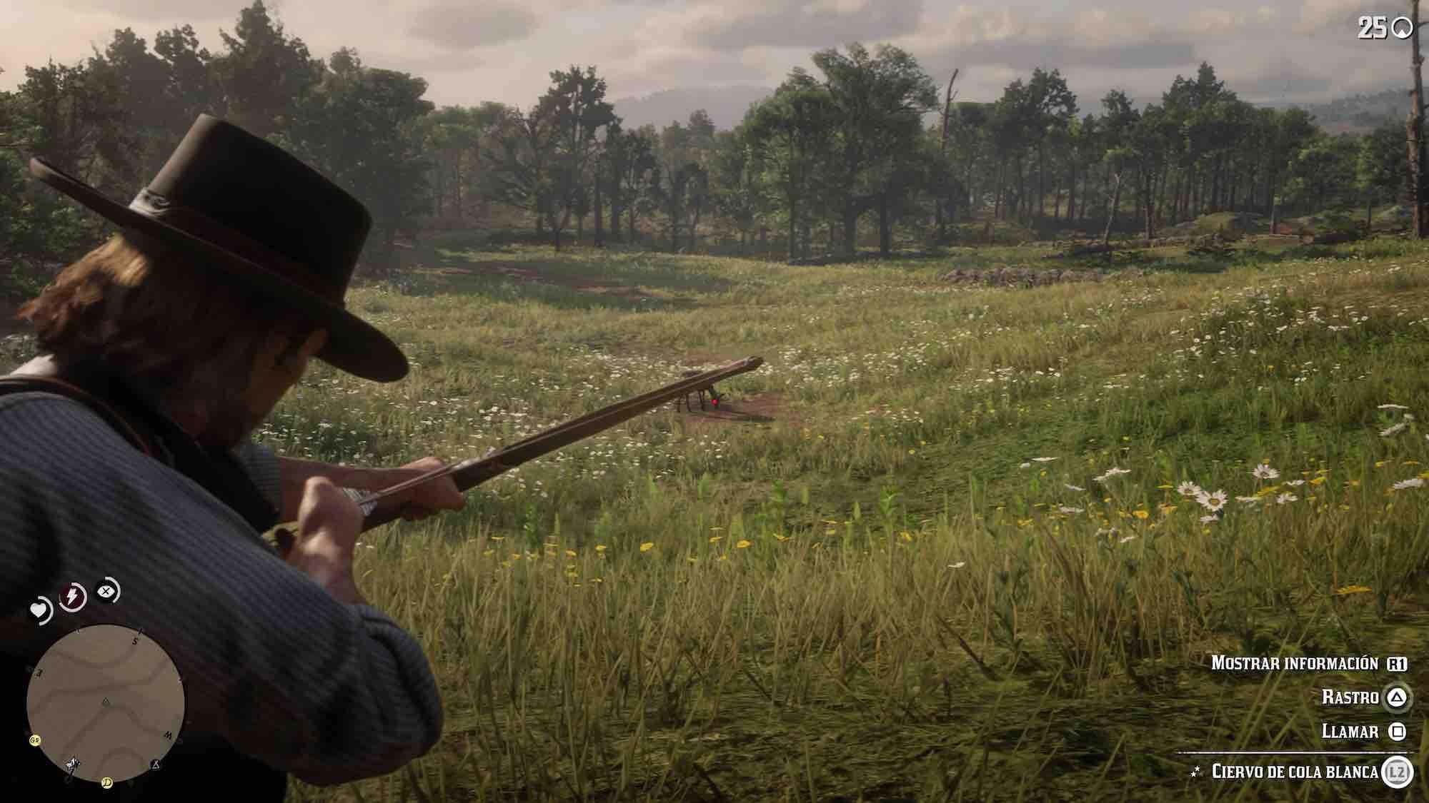 Red Dead Redemption 2 piel perfecta