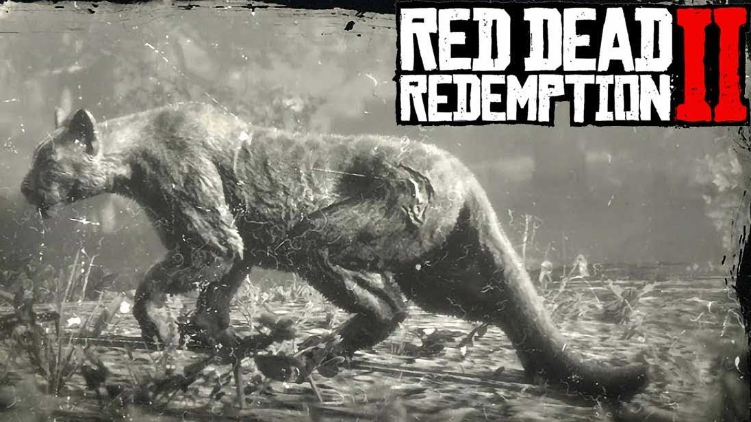 Animales Salvajes Red Dead Redemption 2