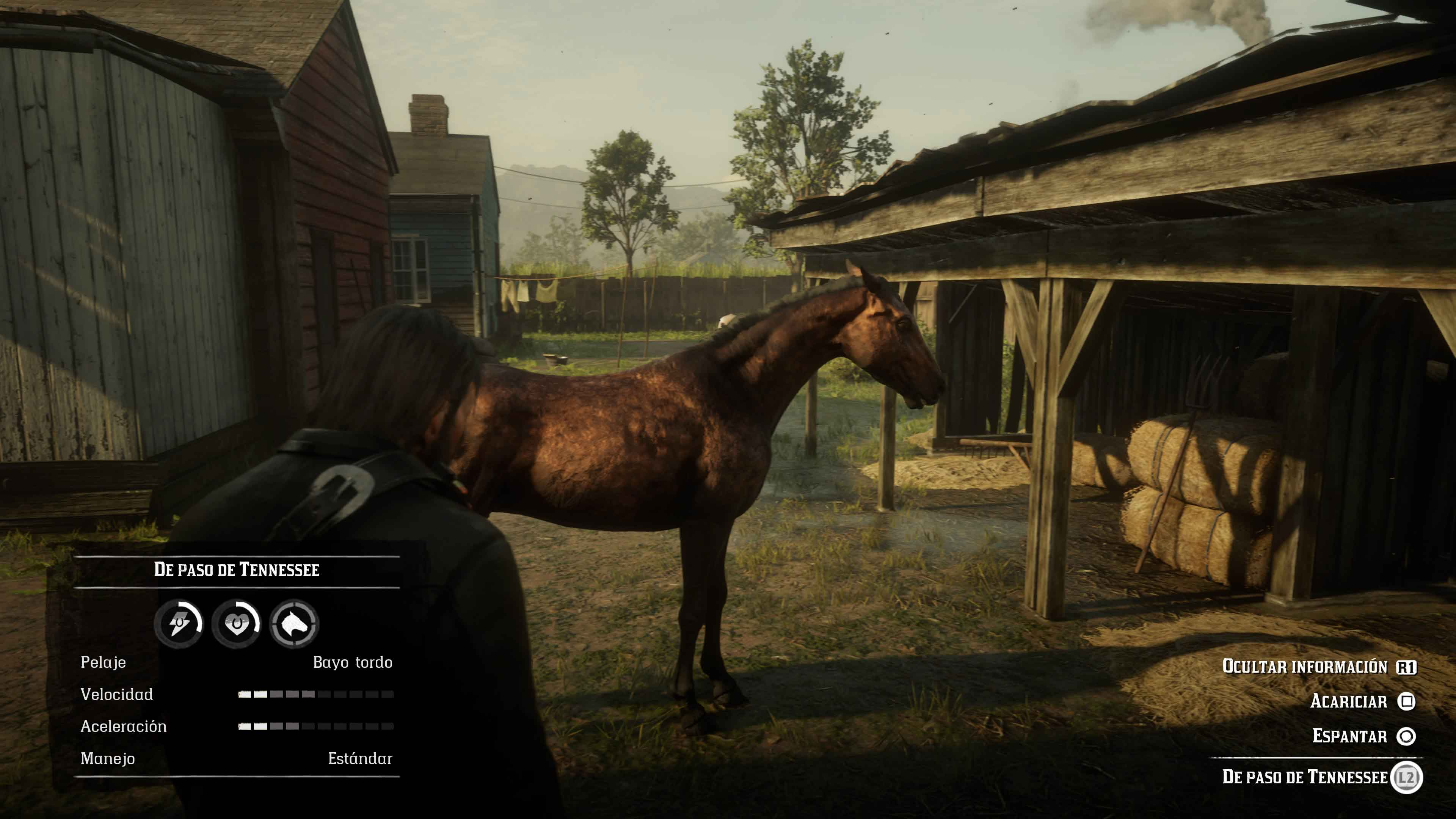 Trofeos Red Dead Redemption 2