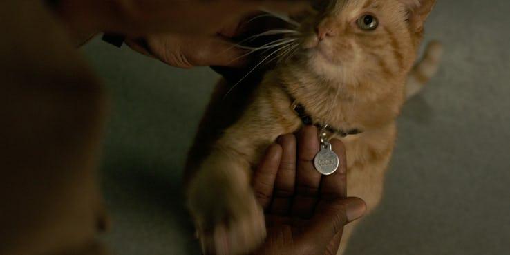 13. Goose, el gato de Carol Danvers, la Capitana Marvel