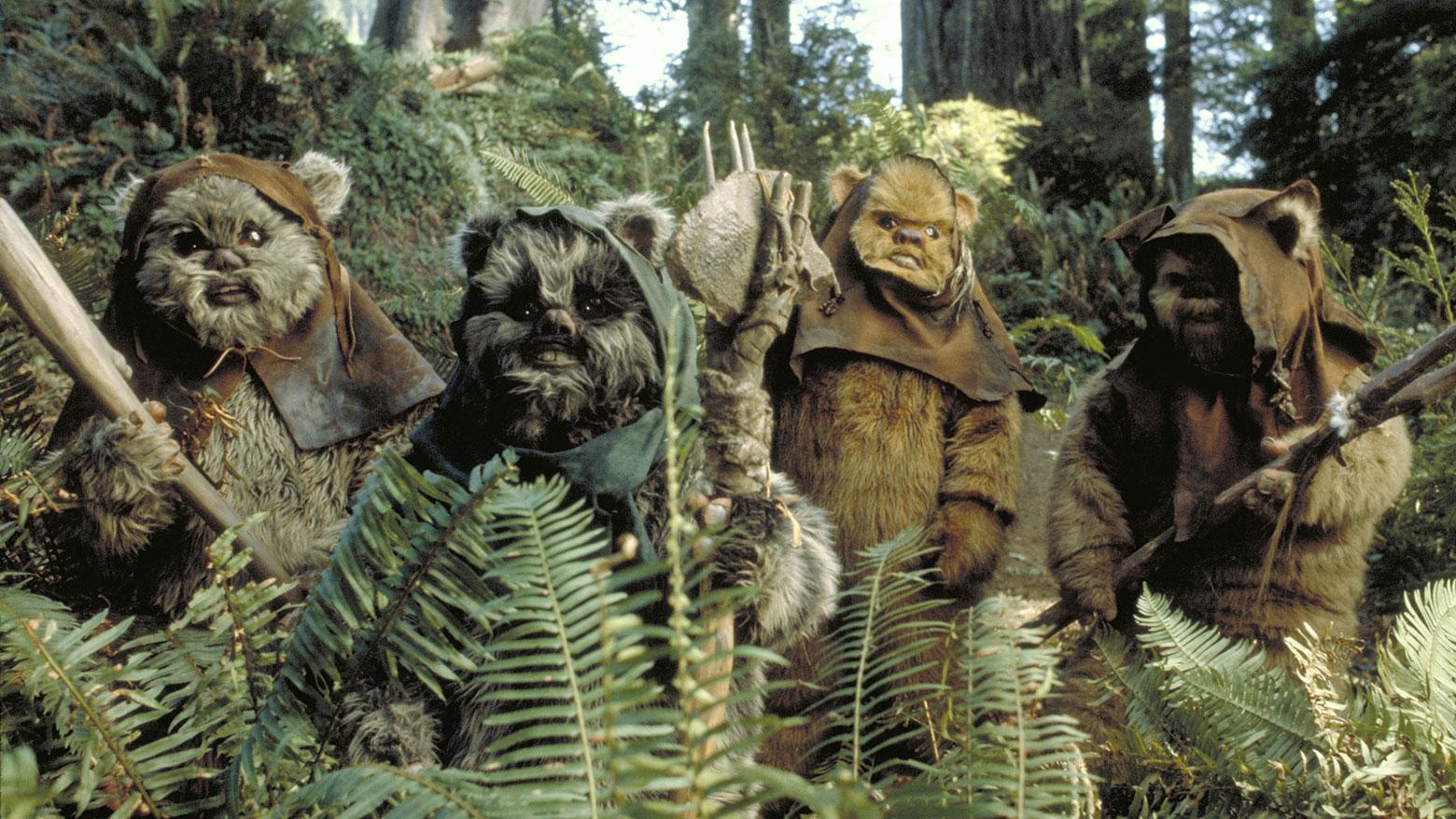Star Wars Star Wars Day La Batalla del Planeta de los Ewoks