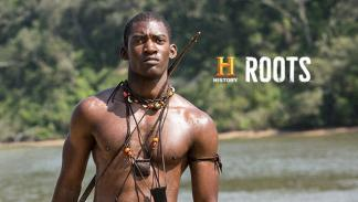 Serie Roots