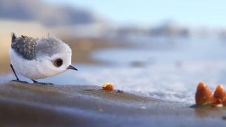 Piper - corto Pixar