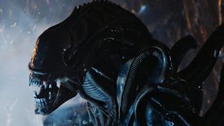 Alien adulto