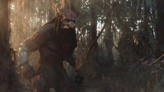 Galería Predator - Imagen 02