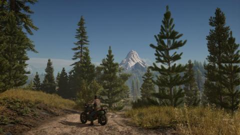 Days Gone PS4 Pro