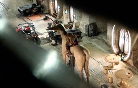 Los últimos Jedi - Space Horses (caballos espaciales)