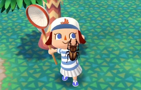 Insectos en Animal Crossing Pocket Camp