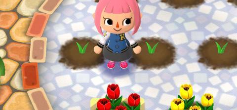 Animal Crossing Pocket Camp - Jardinería