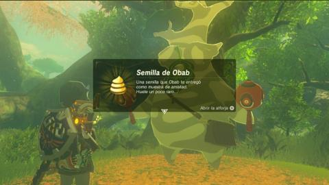 Zelda Breath of the Wild 900 semillas caca