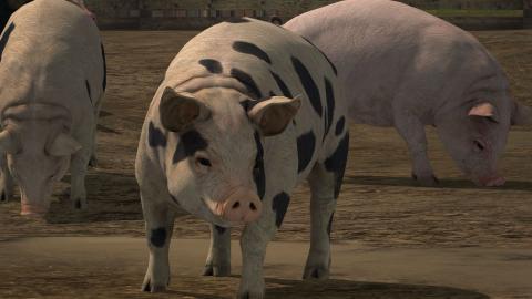 Mejores juegos granjas Stardew Valley Harvest Moon Farming Simulator Farmville
