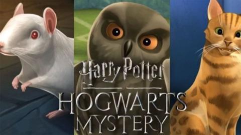 Hogwarts Mystery Mascotas