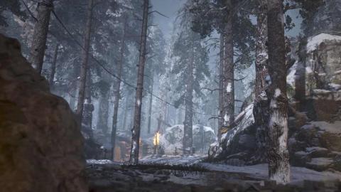 Bosque de las Ardenas CoD WWII