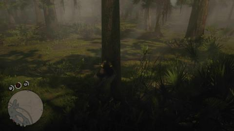 Orquideas Red Dead Redemption 2