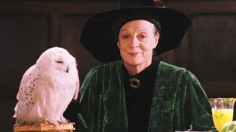 Maggie Smith como Minerva McGonagall