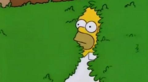 Los Simpson - Homer y el meme del arbusto