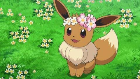 Eevee con corona de flores Pokémon GO