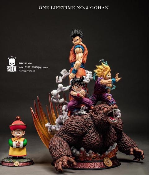Dragon Ball Z - La nueva resina de Gohan
