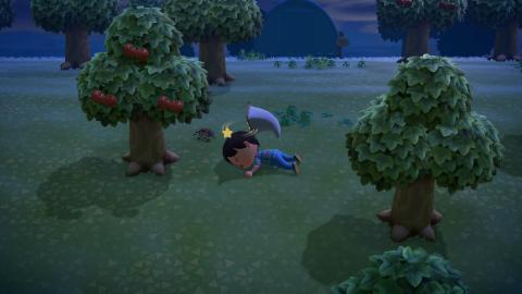 Tarántulas Animal Crossing New Horizons