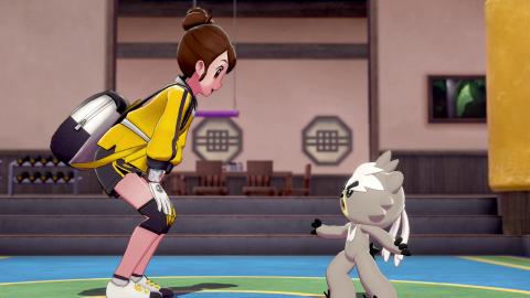 Pokémon Espada Escudo Isla de la Armadura
