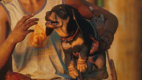 Far Cry 6 Chorizo