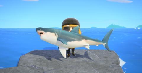 Tiburones en Animal Crossing