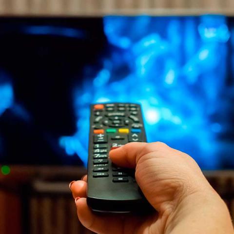 ver television