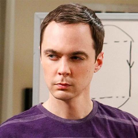 <div>Sheldon Cooper, the big bang theory</div>