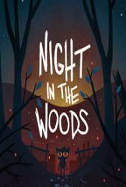 Night in the Woods portada