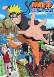 Carátula Naruto Shippuden