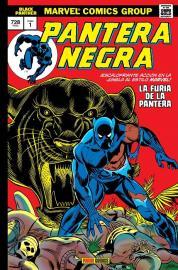 Pantera Negra Furia Cómic