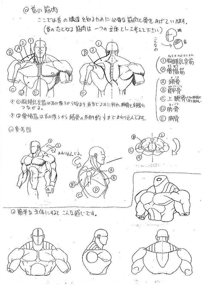 Street Fighter - La guía de anatomía para diseñar sus personajes