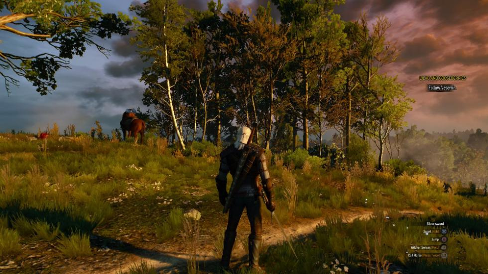 The Witcher 3 en PS4