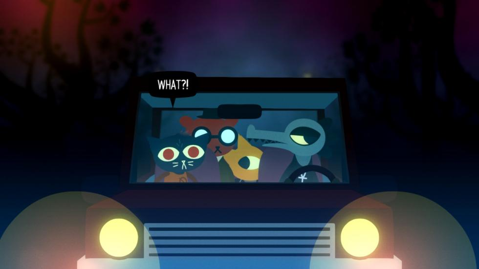 Night in the woods 6