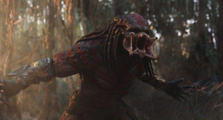 Galería Predator - Imagen 06