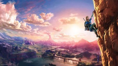 Nintendo Zoom Breath of the Wild