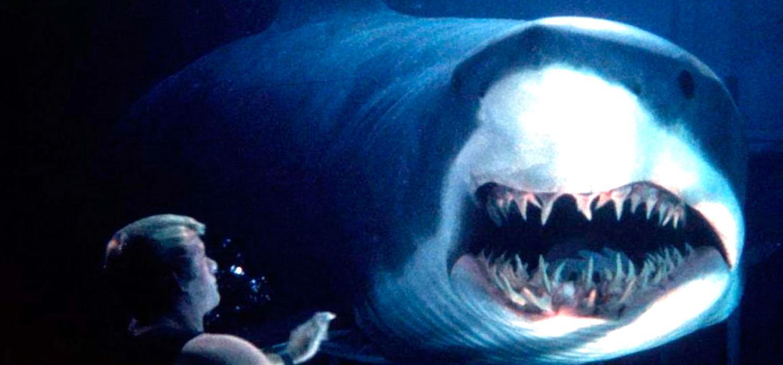 Principal películas tiburones