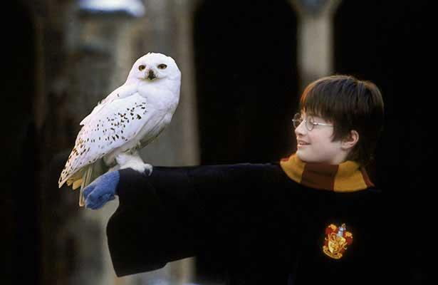 Harry Potter y la piedra filosofal - Crítica de la película