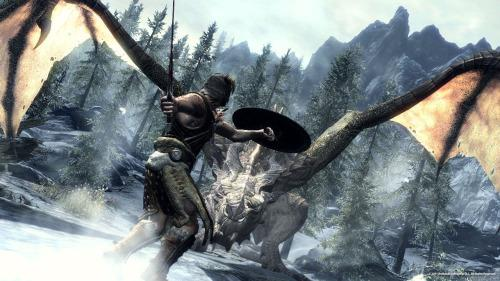 Skyrim vs Witcher 1 5